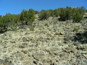 Rubble-strewn slope of weathered andesite